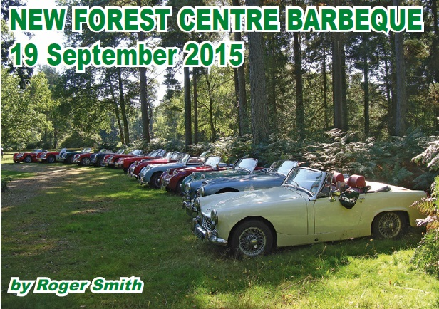 New Forest Centre Barbeque 2015